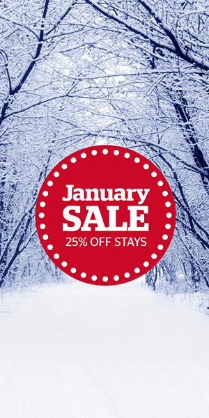 Save 25% in the January Sale