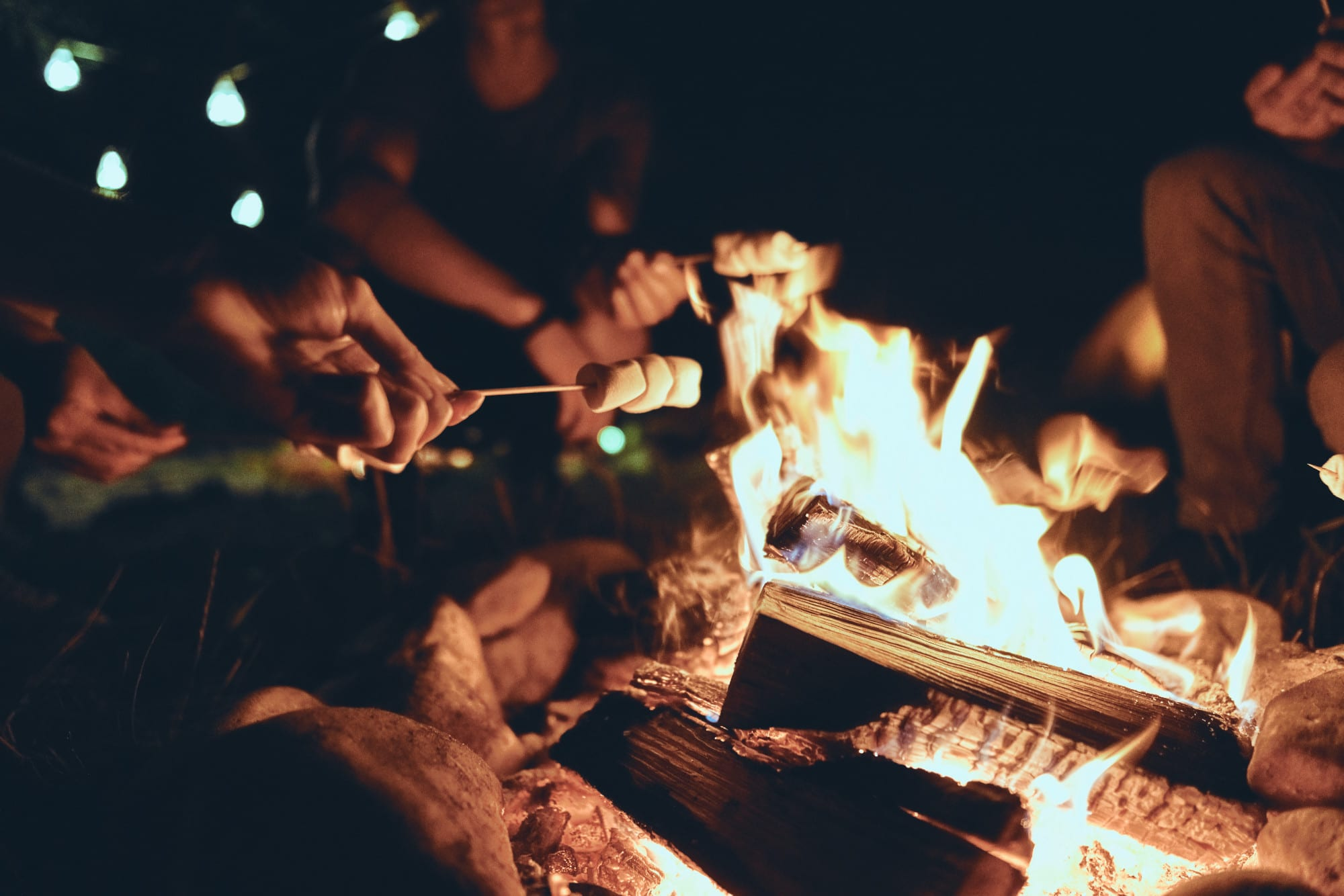 Toasting marshmallows over a campfire