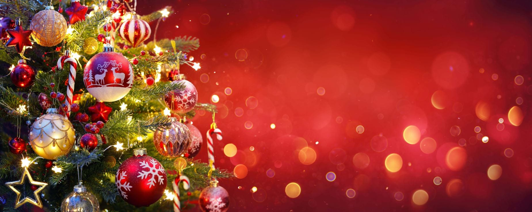 Red Christmas header
