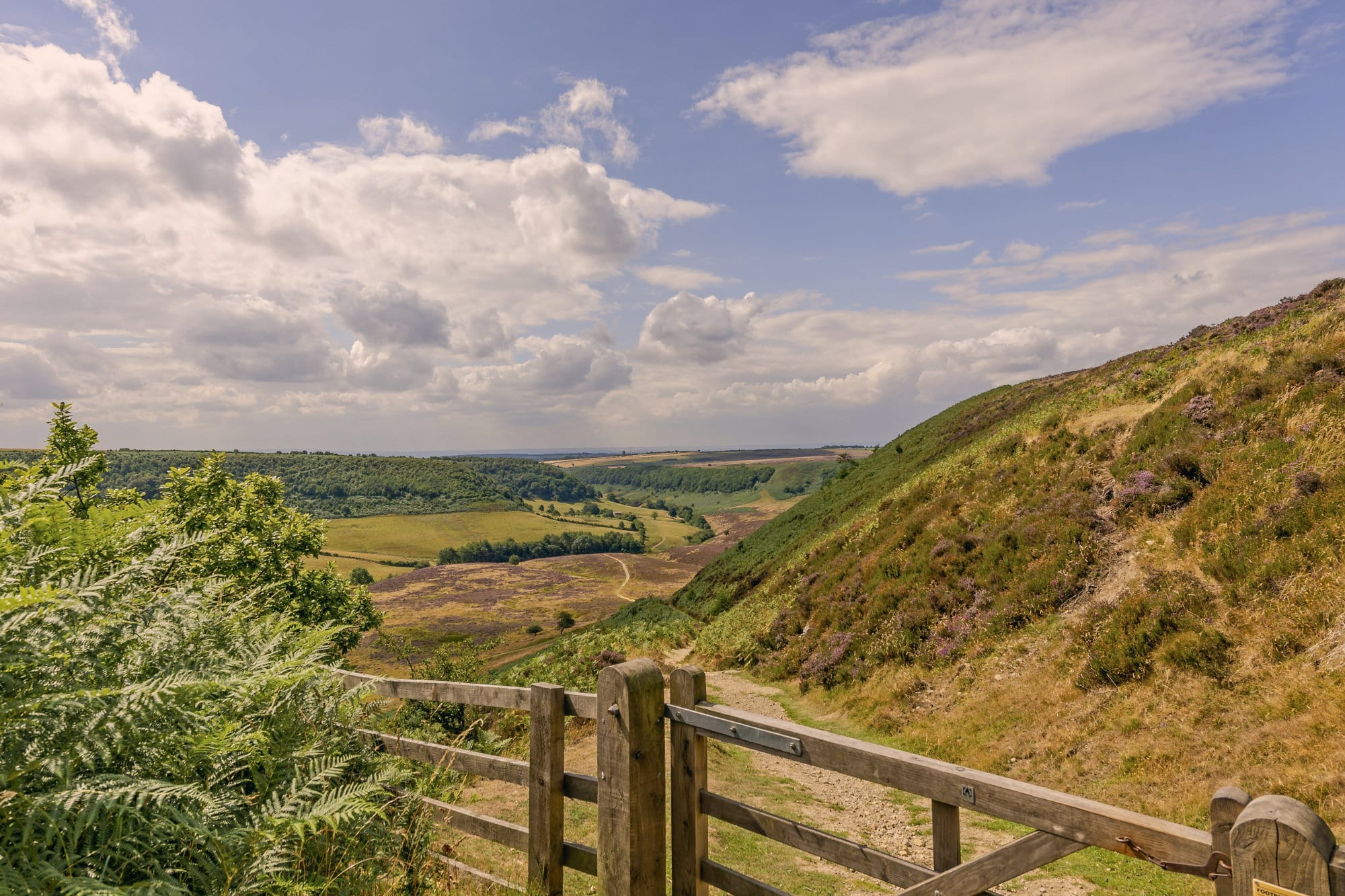 A deep valley in the North York Moors.