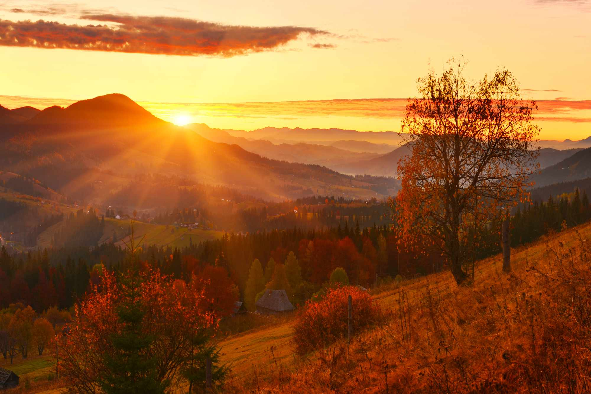 Autumn landscape in the UK