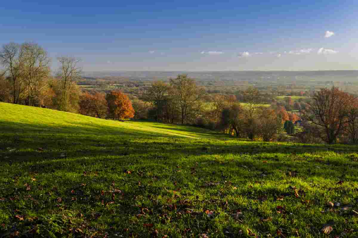 Autumn morning in the South Downs National Park
